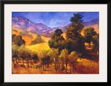 SouThern Vineyard Hills Art by Philip Craig