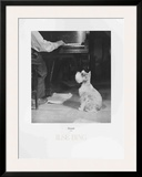 Staccato Listening to Beethoven Prints by Isle Bing