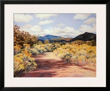 Arroyo Chamiso Prints by Maggie Muchmore