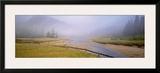 Tidal Mist Prints by Susan Drinker