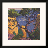 Pinon Grand Canyon Posters by Gustave Baumann