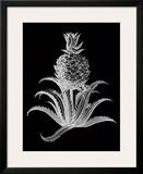 Pineapple Noir II Print