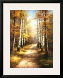 Birch Walk Posters by  Arcobaleno