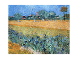 Vincent Van Gogh (1853-1890). Dutch Painter. Field with Flowers Near Arles. 1888. Van Gogh… Giclee Print