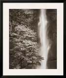 Multnomah Falls Prints by Alan Majchrowicz