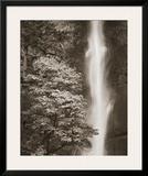 Multnomah Falls Prints by Alan Majchrowicz