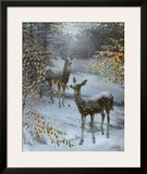 Early Snow Prints by Edward J. Bierly
