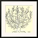 Le Buisson Posters by Henri Matisse