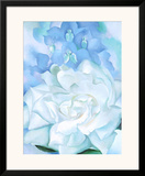 White Rose W/ Lakspur No.2 Print by Georgia O'Keeffe