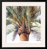 Roma Palm Print by Lois Brezinski