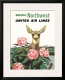 United Air Lines: Pacific Northwest, c.1960s Framed Giclee Print by Stan Galli
