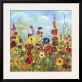 Sunshine Meadow I Prints by Carmen Dolce