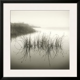 Reeds Framed Giclee Print by Michael Kahn