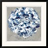 Elegant Hydrangea I Poster by Sally Scaffardi
