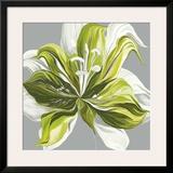 Spring Greens II Prints by Sally Scaffardi