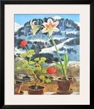 Amaryllis Art by Alfons Walde