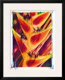 Hawaiian Heliconia Framed Giclee Print by Joanne Bolton
