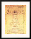 Vitruvian Man Proportions of the Human Figure Posters by  Leonardo da Vinci