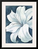 Wistful Lily I Prints by Kaye Lake