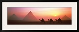 The Great Pyramids of Giza, Egypt Prints by Shashin Koubou