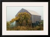 Golden Promises Framed Giclee Print by David Winston