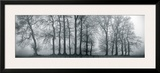 Silver Mists III Framed Giclee Print by Bill Philip