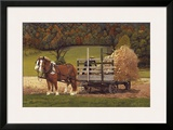 Amish Harvest Framed Giclee Print by Kathleen Green