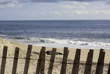 Beach Dunes Fence in Hamptons Photo