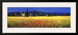 Tuscan Panorama, Poppies Posters by David Short