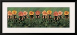 Wild Roses Posters by Anne Geddes