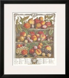 Twelve Months of Fruits, 1732, August Posters by Robert Furber