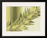 Water Leaves II Framed Giclee Print by Mali Nave