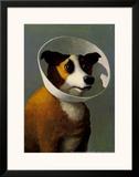 Filmhound Poster by Michael Sowa