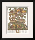 Twelve Months of Fruits, 1732, June Art by Robert Furber