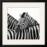 A Safe Place Framed Giclee Print by Nina Papiorek