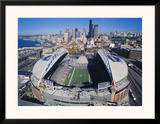 Seattle Seahawks- Quest Field Art