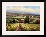 Italian Vineyards Art by  Andino