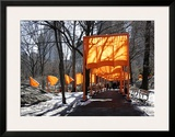 The Gates, no. 53 Poster by  Christo