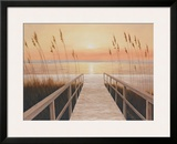 Walkway to Sea Poster by Diane Romanello