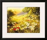 Evening Sun Print by Mary Dipnall
