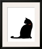 Single Black Cat Poster