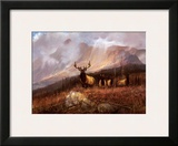 Bookcliffs Elk II Prints by Michael Coleman