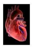 Cœur Impression giclée