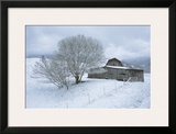 Icicle Magic Framed Giclee Print by David Winston