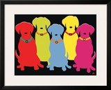 Five Labs Print by Jim Williams