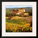Provencal Village III Prints by Michael Longo
