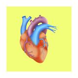 Heart Giclee Print by Arqueveaux BSIP