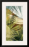 Palm Frond II Prints by James Burghardt