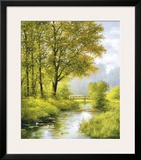 Dreamy Creek II Prints by Heinz Scholnhammer