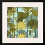 Lotus II Prints by Sally Bennett Baxley